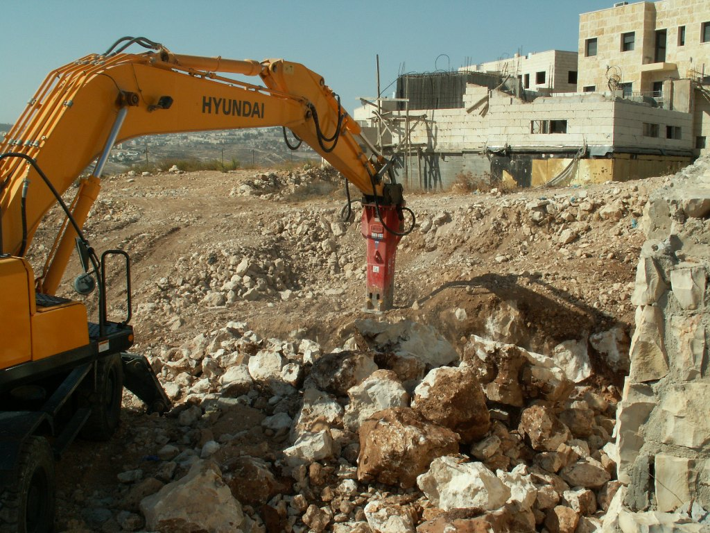 Construction in Adam